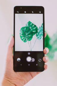 Apex-wireless-phone-plans
